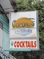 Coconutsの写真