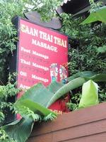 BAAN THAI THAI の写真