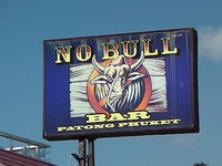 NO BULL BAR Image