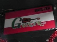GUTTAR Bar Image