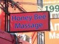 Honey Bee Thumbnail