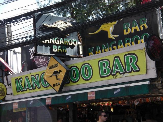 KANGAROO BAR Image